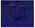 STN-removebg-preview